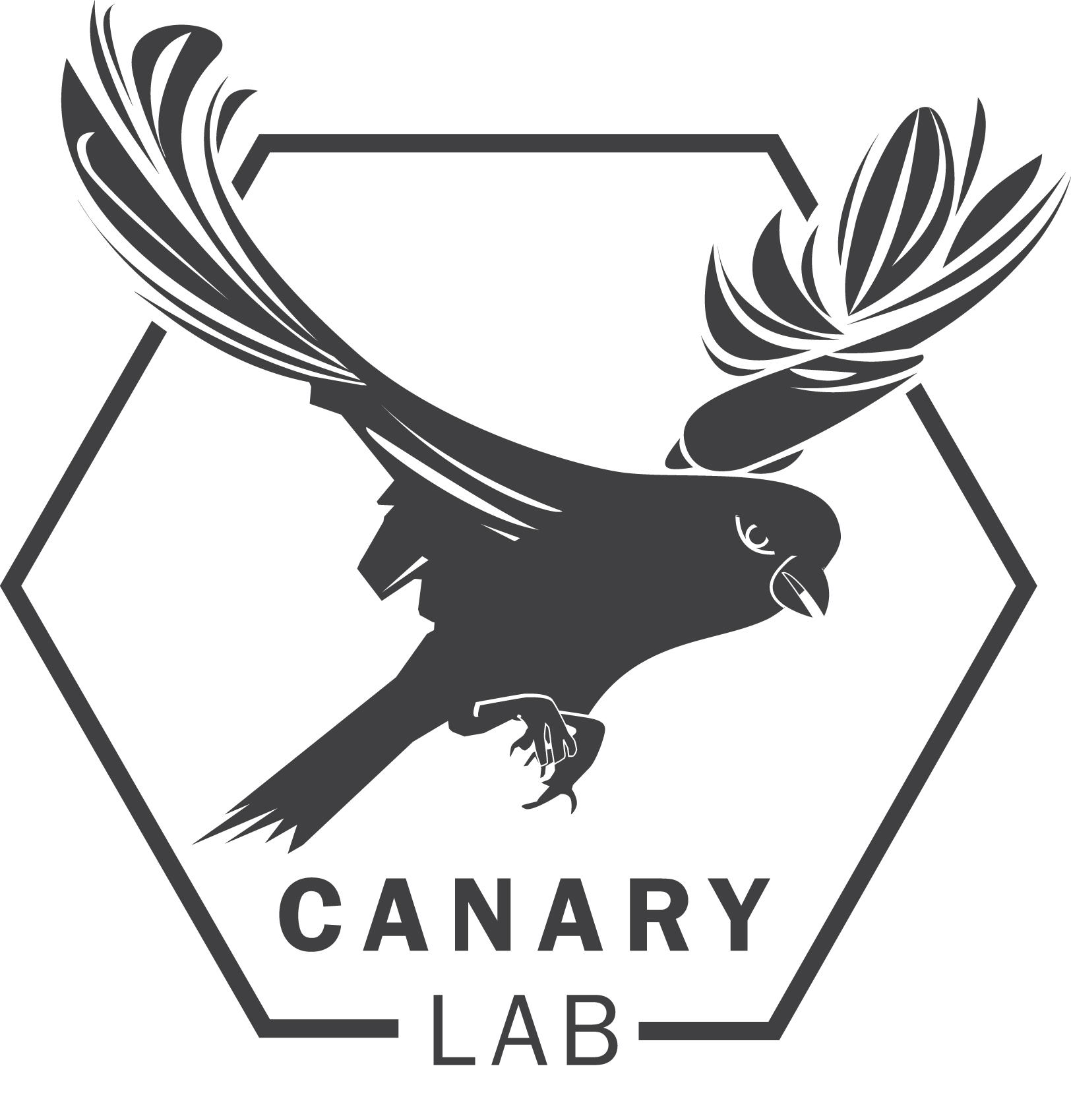 the-canary-lab-at-syracuse-university